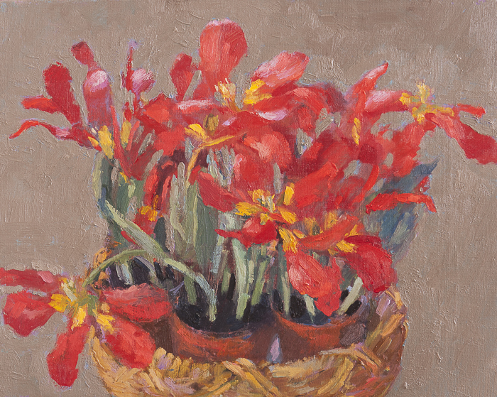 Potted Red Flowers in Basket 40x50cm