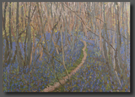 English landscapes/Bluebell magic 50x70cm