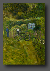 Summer Day At The Allotments 55x38cm