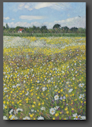Buttercups and Daisies 70x50cm