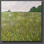 A meadow in spring 80x80cm
